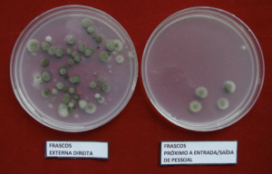 Análise do ar: Microrganismos