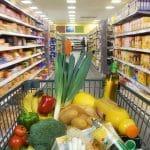 controle de pragas na indutria de alimentos e supermercados