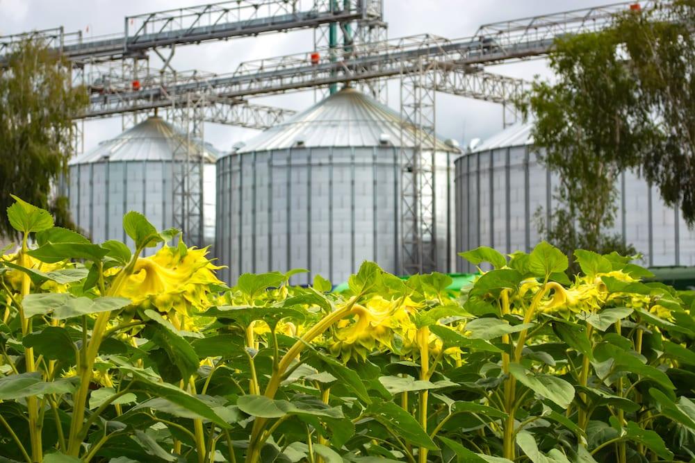A Relevância do Manejo Ecológico de Pragas para Indústrias